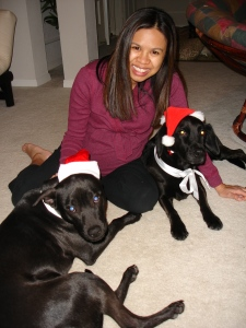 Merry Belated Christmas from me and the Santa dogs.